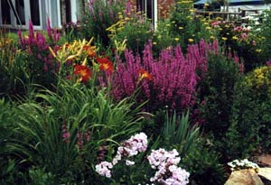 Perennial Bed Landscaping